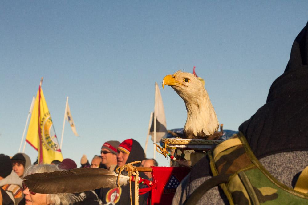 Standing Rock: Part 2 -