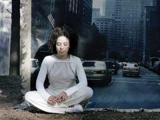 Topley-Bird Zen and the art of sitting in unpredicatble danger