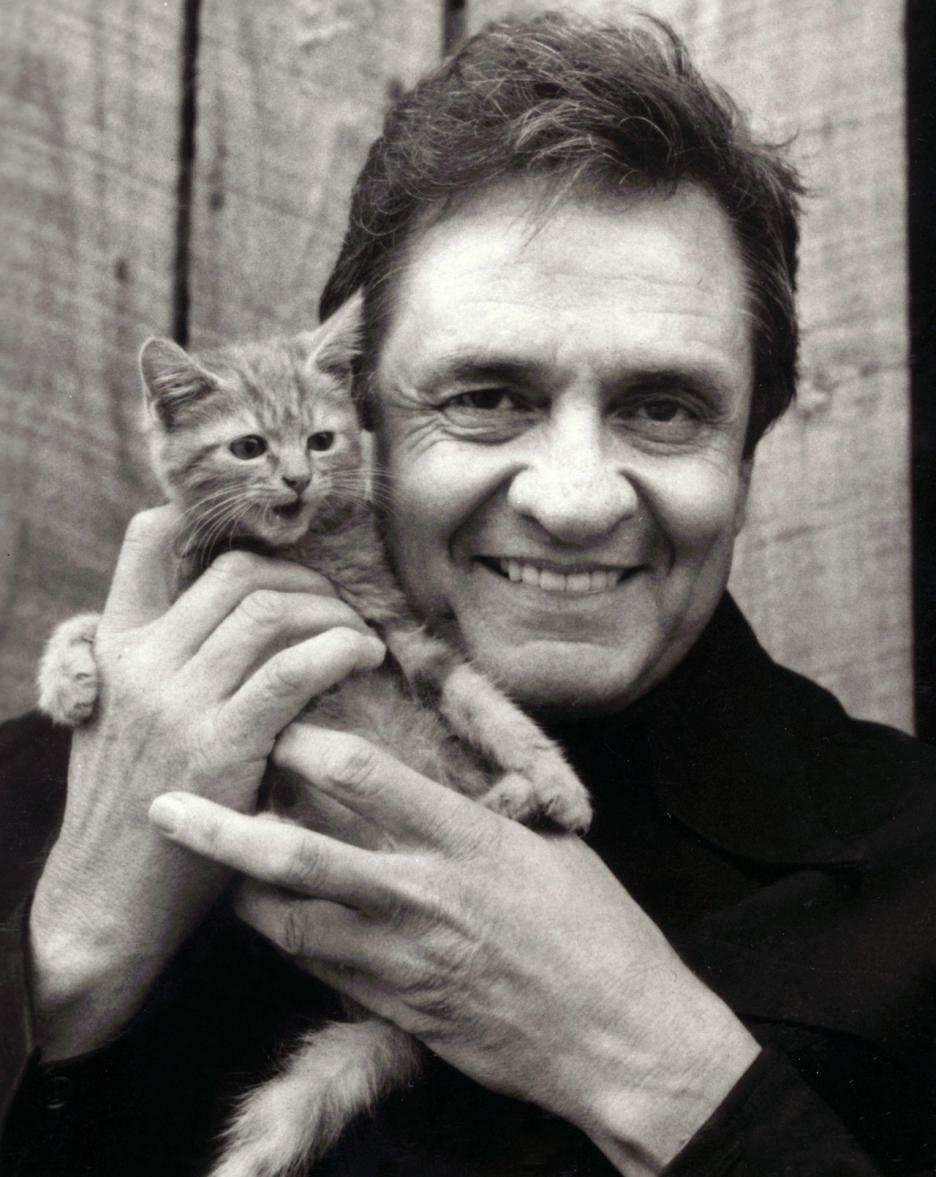 Aw, Johnny Cash and a yawning kitten 🐱. There's some sunshine for ya!