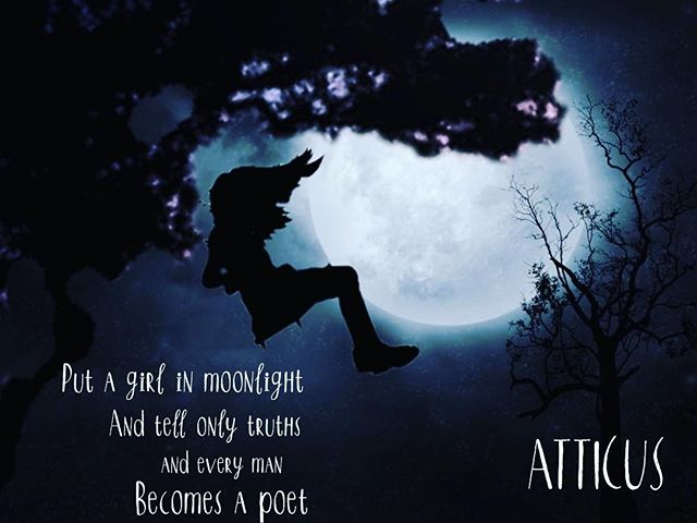 Playing with @pixomatic_app with the beautiful words of @atticuspoetry - the words are sublime. My pixo is a work in progress ;) #atticuspoetry #ilanameanstree