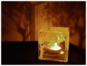 Reflective Cube Vase.jpg