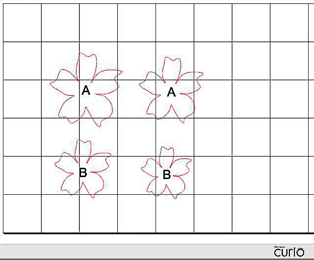 "step 1 - The pdf download includes two size flowers. Each flower is made up of two petal layers. You will need 8 large and small flowers in each color to decorate a container that measures 4.75"" across the top. That's a total of 16 flowers.   CK  - Download the pdf file for the flower templates.  SC  - A separate pdf download contains a cut file for Curio."