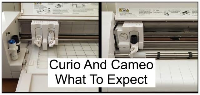 Curio and Cameo.jpg