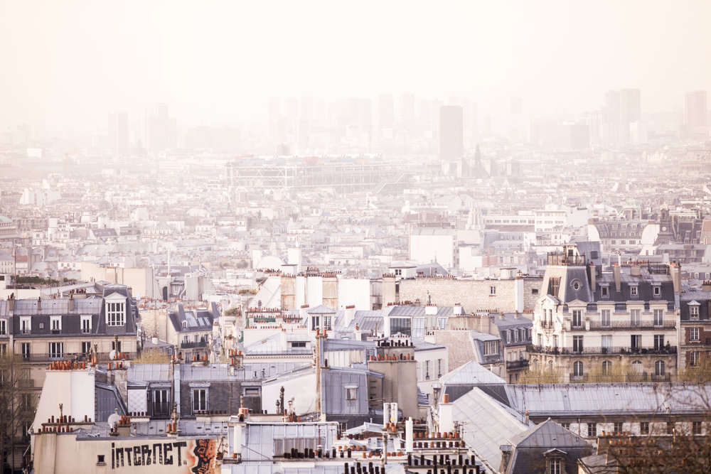 Paris Rooftops depicting the rise of the urban industrial city over the last 300 years.