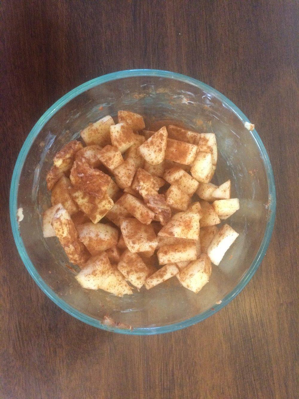 Apple Cinnamon Bites2.jpg
