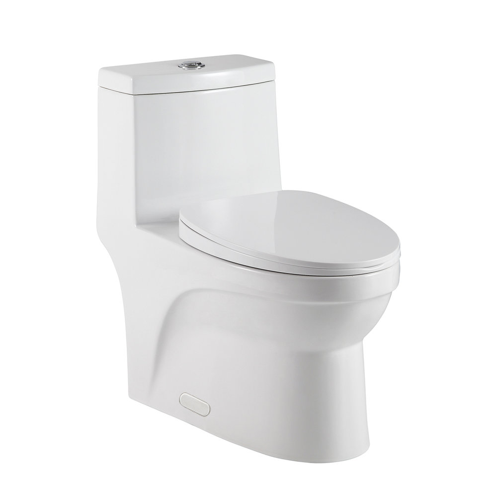 "MIAMI ONE-PIECE TOLIET - WHITE - Water Use: Dual Flush 4/6Lpf (1.1/1.6Gpf)Flush System: Siphon jet 3"" out letFlush Kit: Polished chrome lever side flushIncludes Slow Close Toilet Seat"