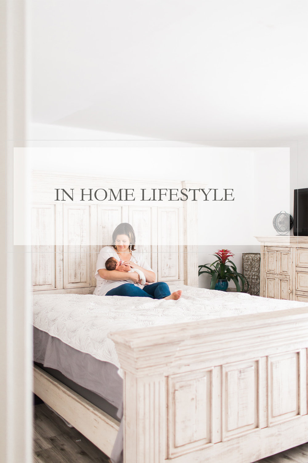 LIFESTYLE    VIEW THE GALLERY