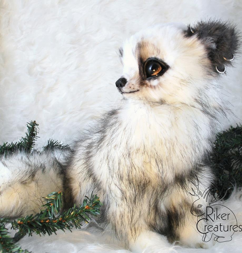 snow fox.jpg