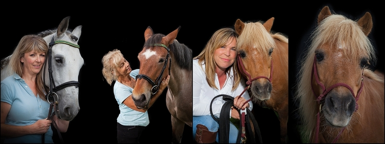 Bristol Equine Photographer collage | Black Tie Portraits