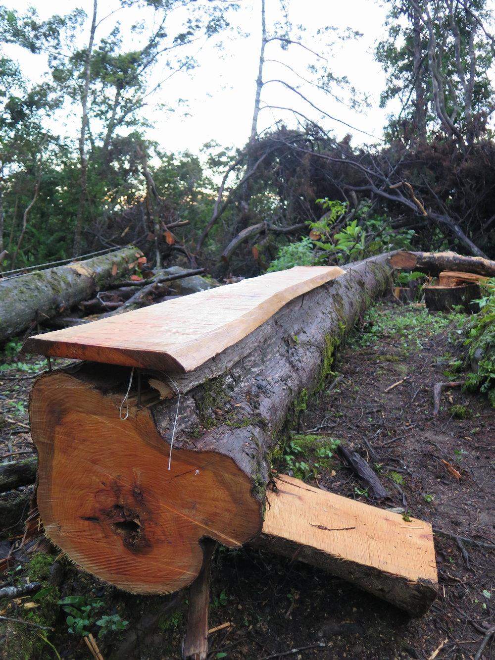 Cutting a Flat Plank
