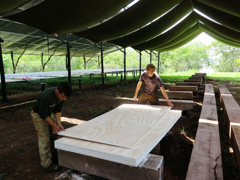 Harry & Chris arranging plywood boards ready to be painted last month.