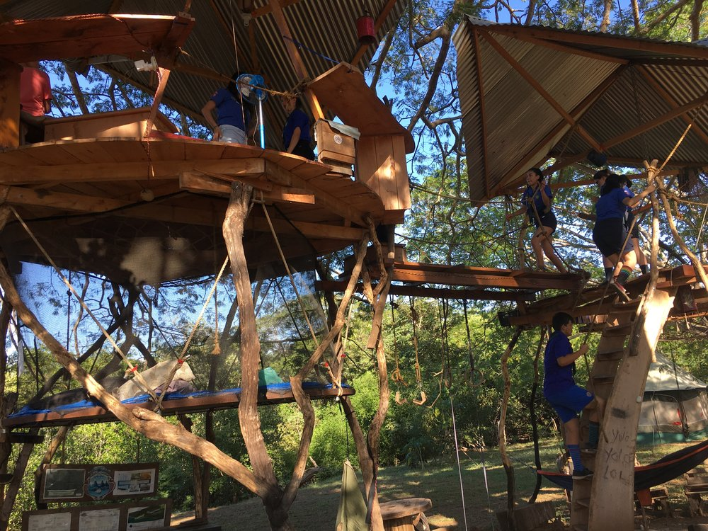 Tree-house antics - the scouts enjoyed exploring the keel and the 'casa del árbol'.