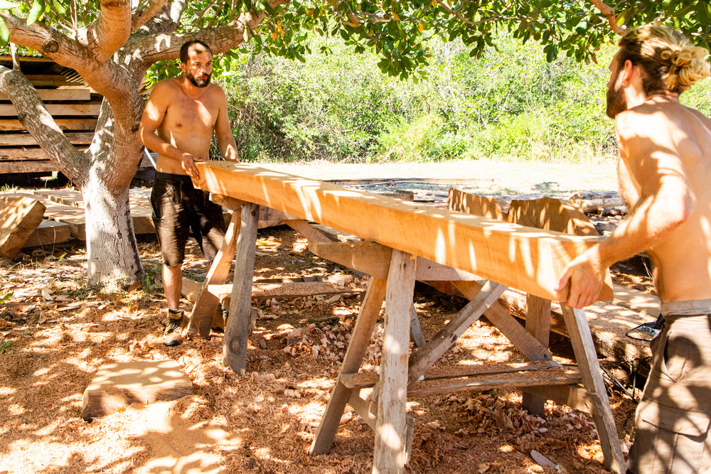 Adrien & Silas position a section of Frame 47/48 on the saw-horses for shaping. Photo: Jeremy Starn
