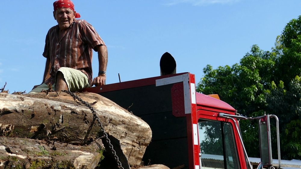 Red on red - sitting on top of the latest delivery of cypress. Photo: Finn Richardson