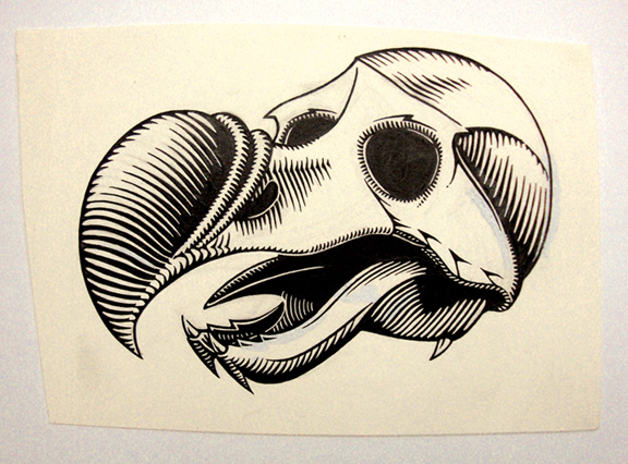 Dodo Skull / ink on paper / 1991 / sold