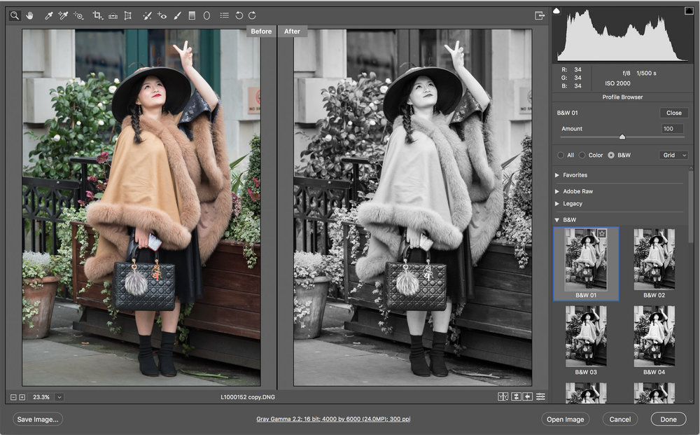 Adobe Camera Raw 10.3 - Monochrome Profile 01