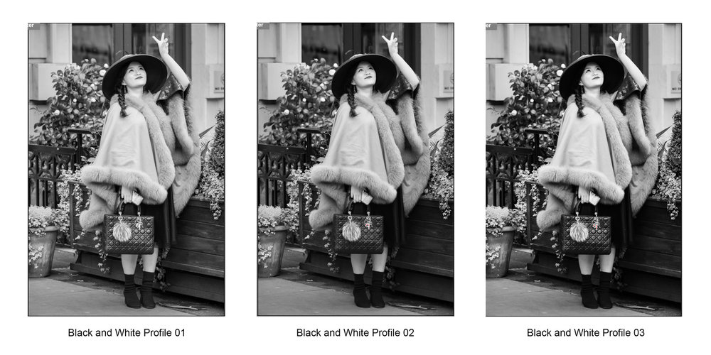 Adobe Camera Raw Monochrome Profiles 1-3