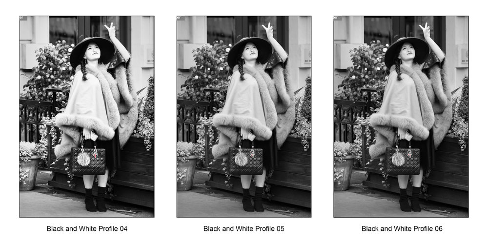 Adobe Camera Raw Monochrome Profiles 4-6