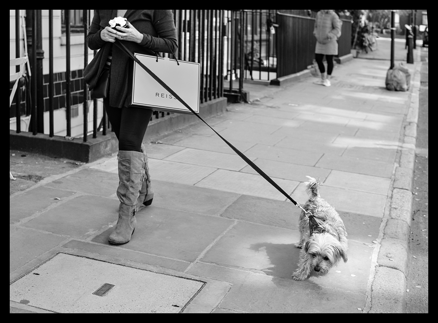 Reluctant Walkies - Leica SL