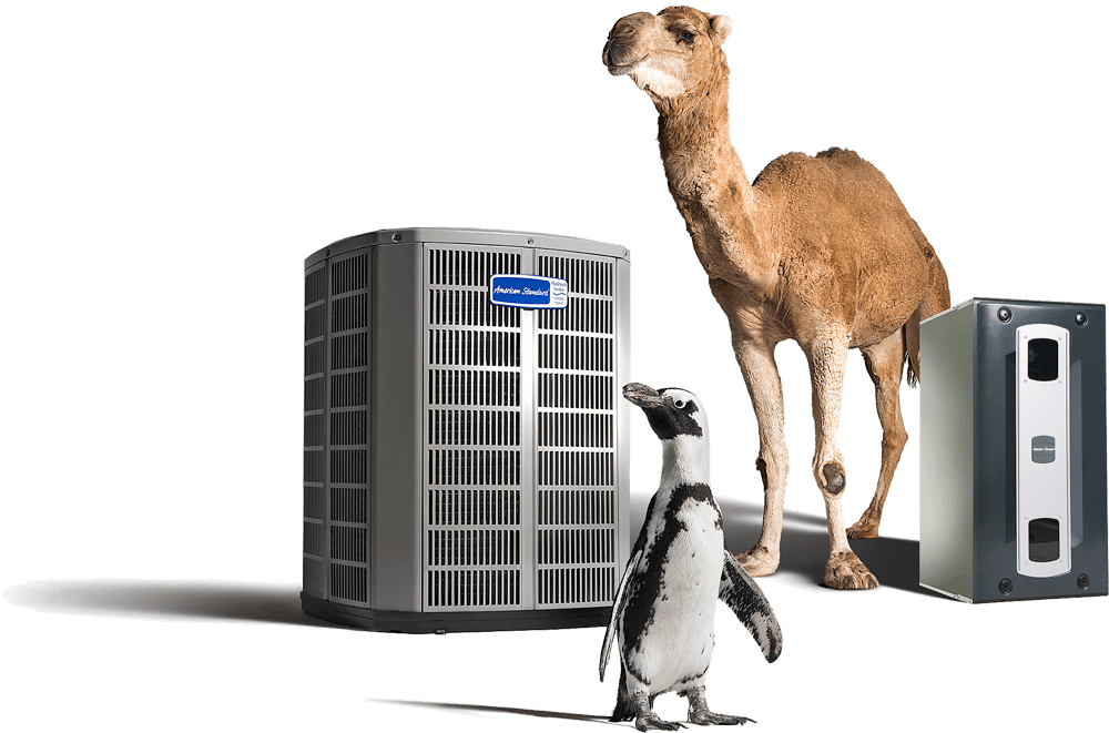 Cooling Unit with a Penguin and a Camel