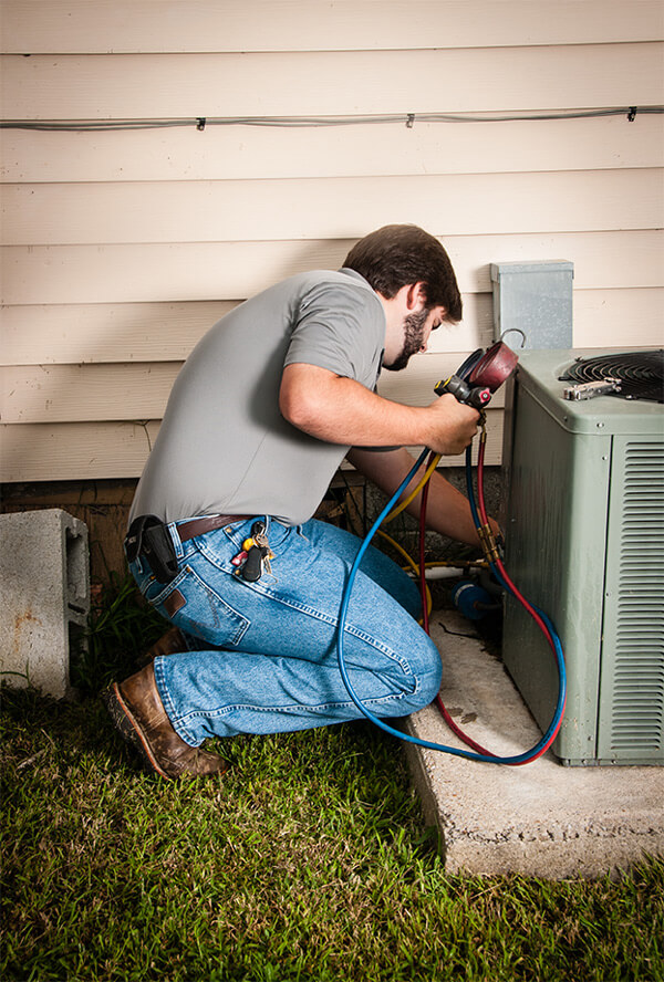 Busy Bee HVAC Specialist performing Maintenance