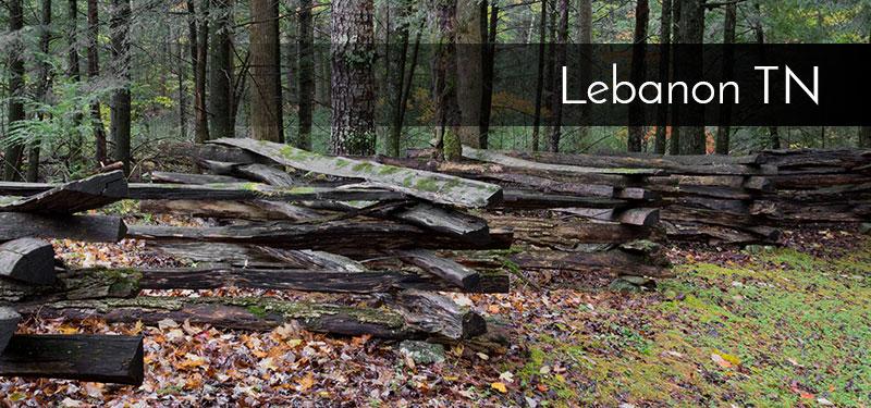 lebanon_800x350.jpg