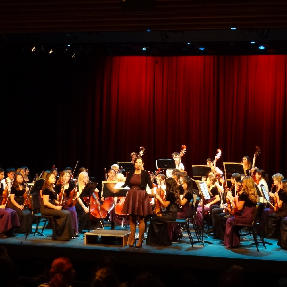 CARLSBAD HIGH SCHOOL CHAMBER ORCHESTRA -