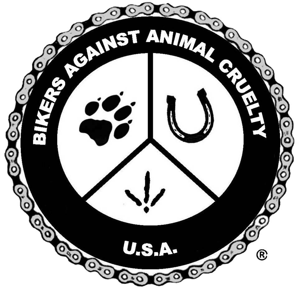 Image result for bikers against animal cruelty