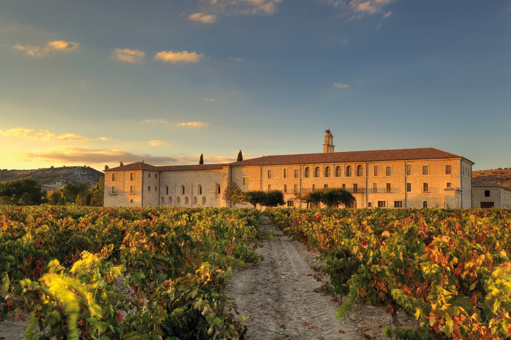 View of the resort from the vineyards at sunset.