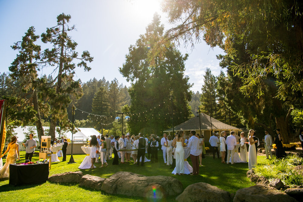 2016 Imaginarium Festival Gala at Meadowood Napa Valley. Photo courtesy of Bob McClenahan
