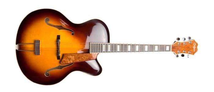Octigan Guitars Warm Brown Front (Custom) copy 2 (1).jpg
