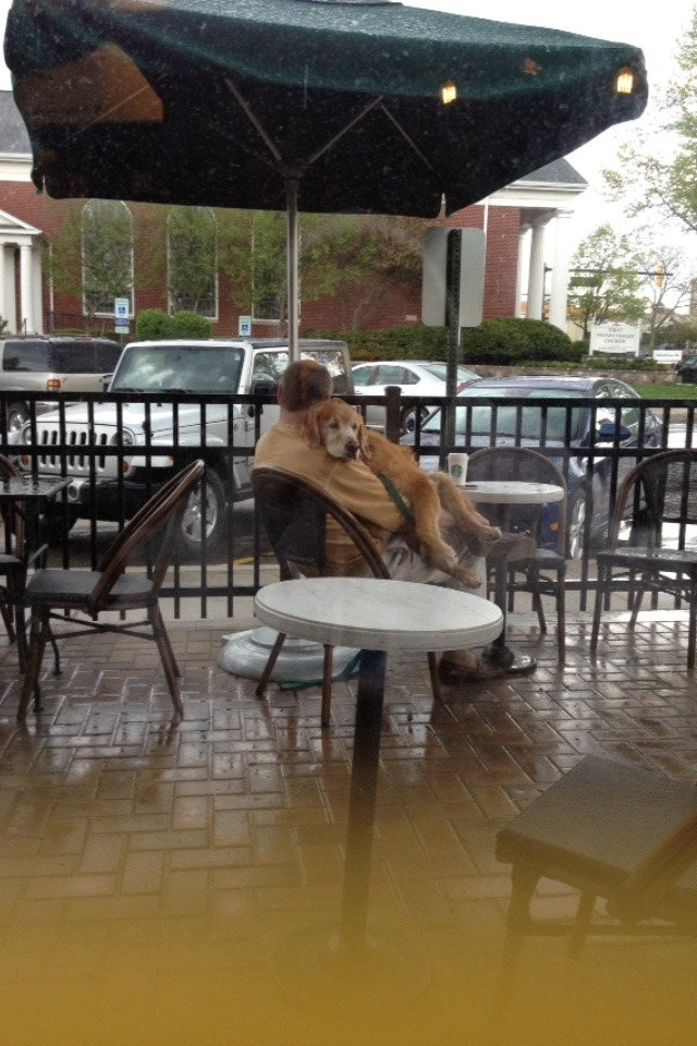 marinahanna: menandtheirdogs: cakeisgr:  Last year I went to a Starbucks and it started raining so this older man just picks his dog up and held him. This is the type of person I want to be.