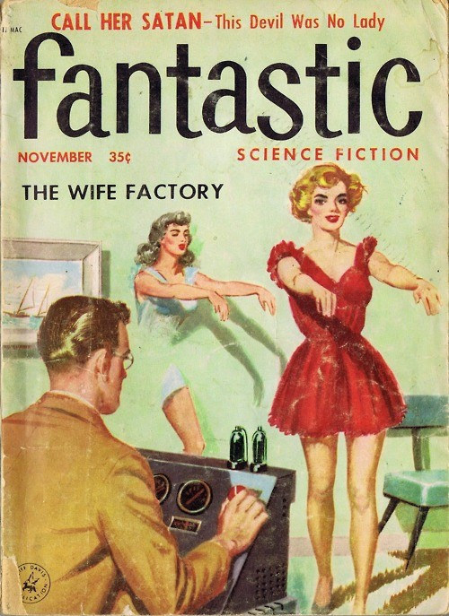 teachingliteracy :     the-wife-factory (by  ADNpress )