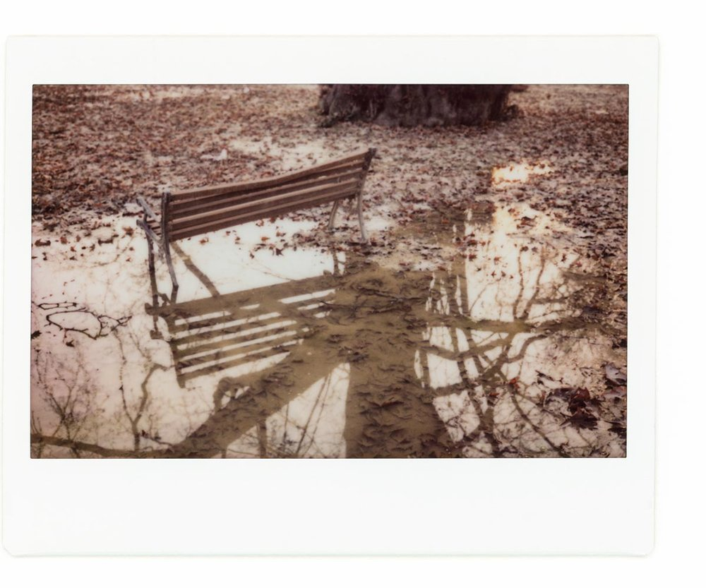 Karan Kumar Sachdev - In the shadow of the Chinar01.jpg