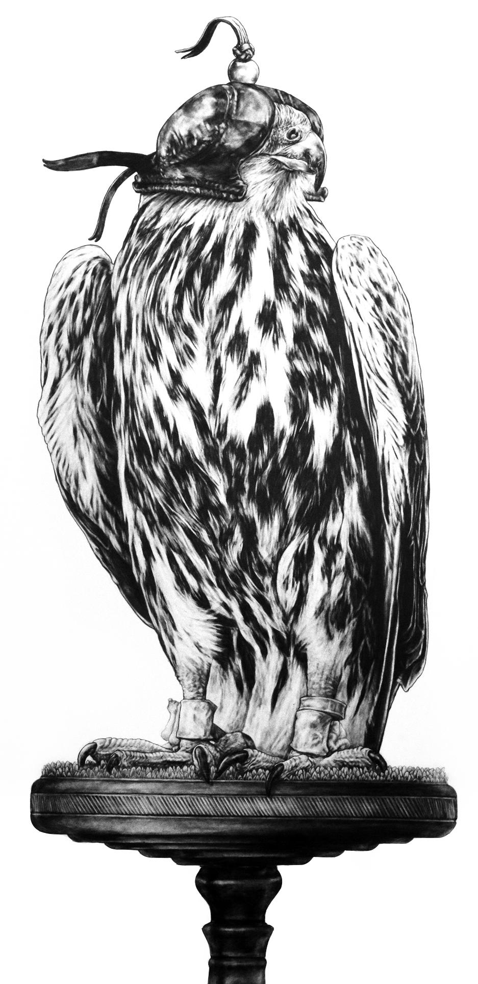 Falcon .   2017. Graphite on Fabriano Artistico 300 GSM Paper. 140 x 120 cm.