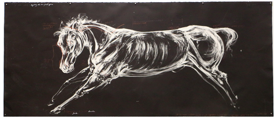 Study of a Warless Horse.  2016. Monotype and conte on BFK Paper. 250 x 120 cm. AVAILABLE.