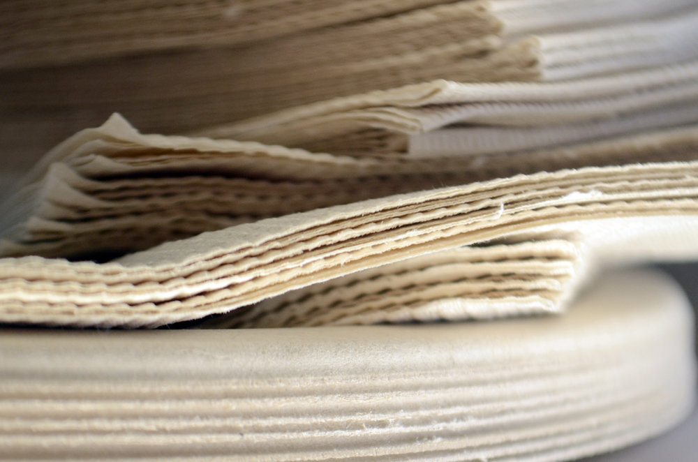 Vastly paper plates and napkins made from wheat straw pulp