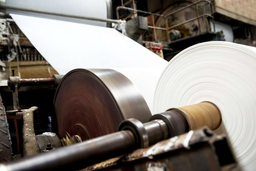 Rolls of paper in a paper factory