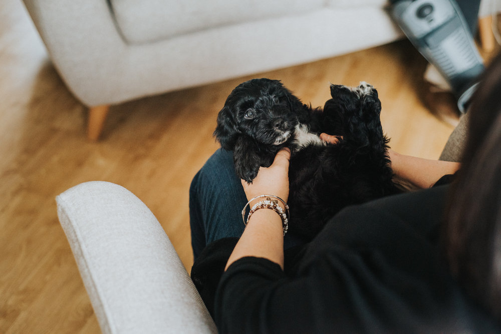 Brisbane Family Photographer | Lifestyle Pet Photography-24.jpg