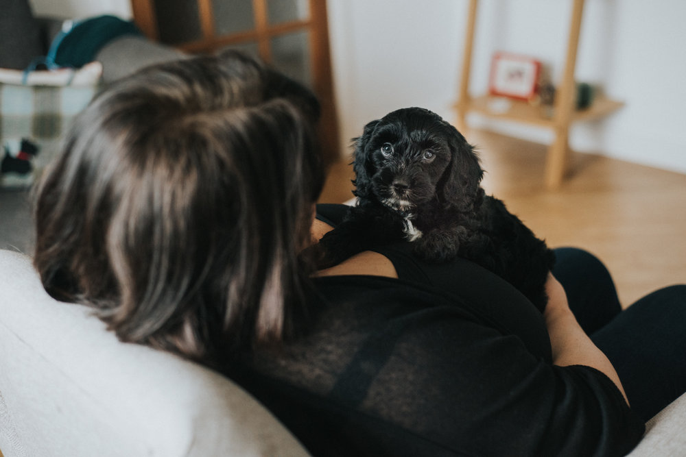 Brisbane Family Photographer | Lifestyle Pet Photography-27.jpg