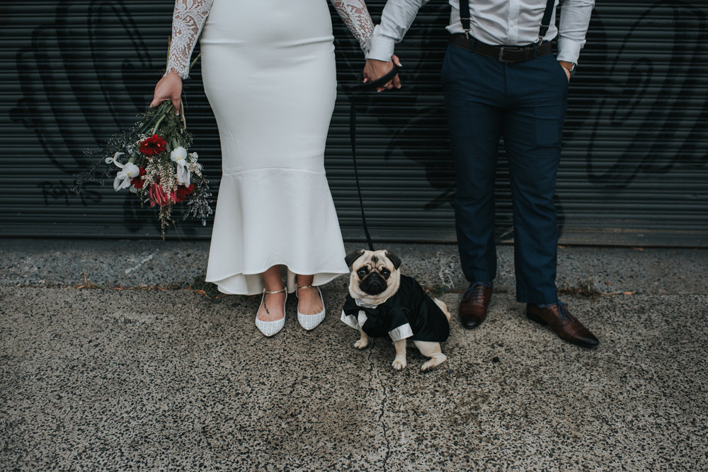 Megan + Warren (and the most adorable groomsman you ever did see - Mr Pickles Finlayson
