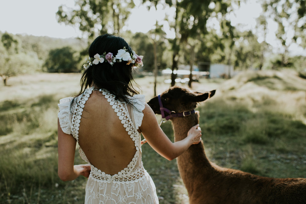 Brisbane Wedding Photographer | Engagement-Elopement Photography-5.jpg