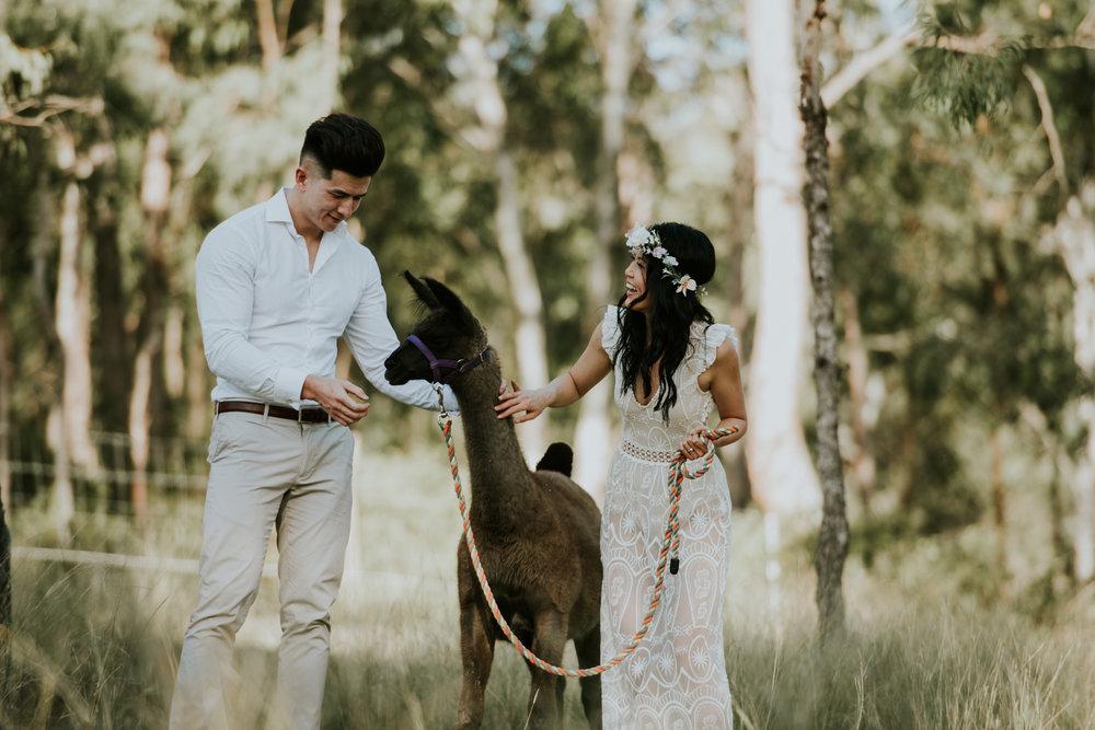 Brisbane Wedding Photographer | Engagement-Elopement Photography-8.jpg