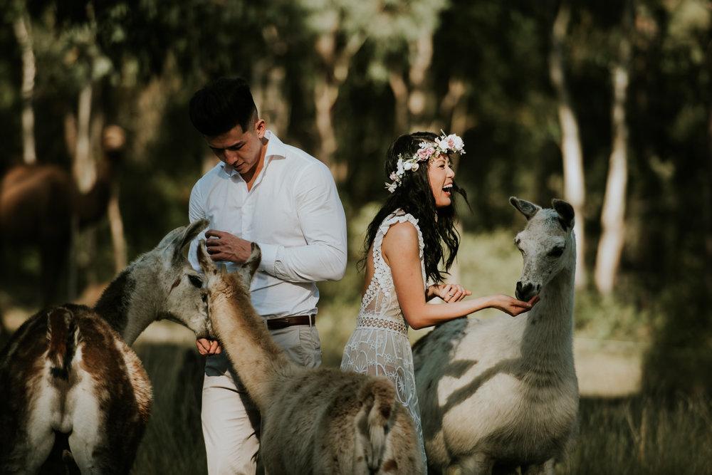Brisbane Wedding Photographer | Engagement-Elopement Photography-12.jpg