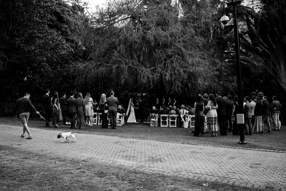 Brisbane Wedding Photographer | Engagement-Elopement Photography | Factory51-City Botantic Gardens Wedding-31.jpg