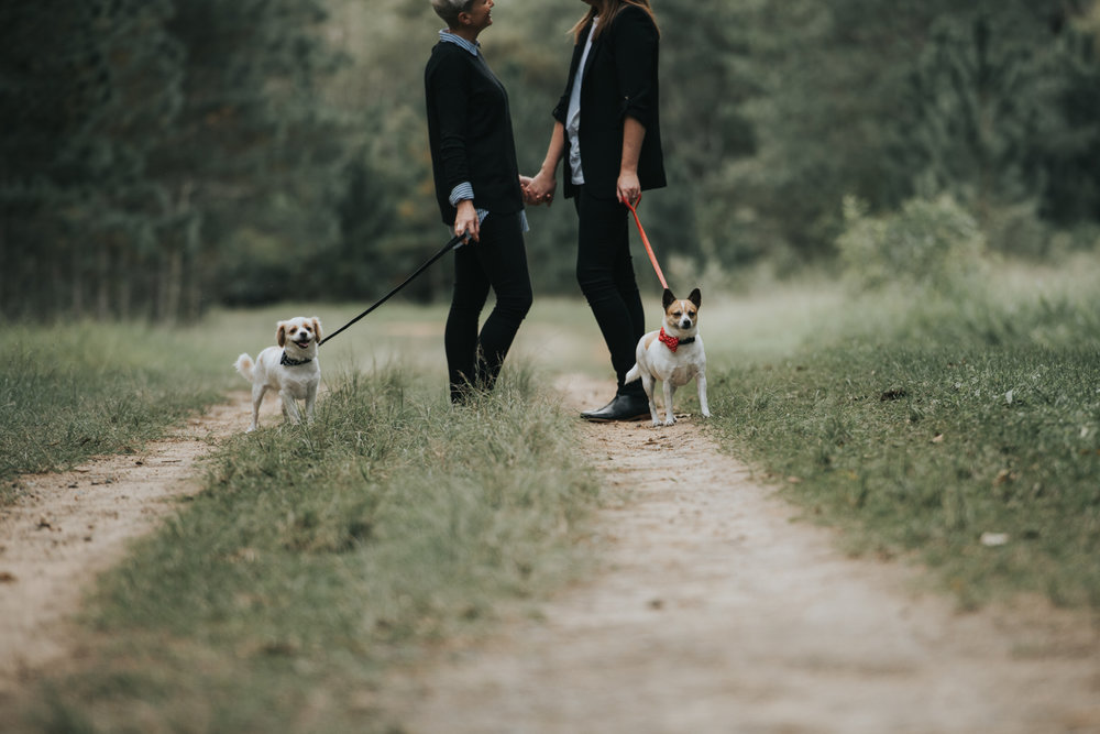 Brisbane Lifestyle Wedding Photographer   Engagement Photography-2.jpg
