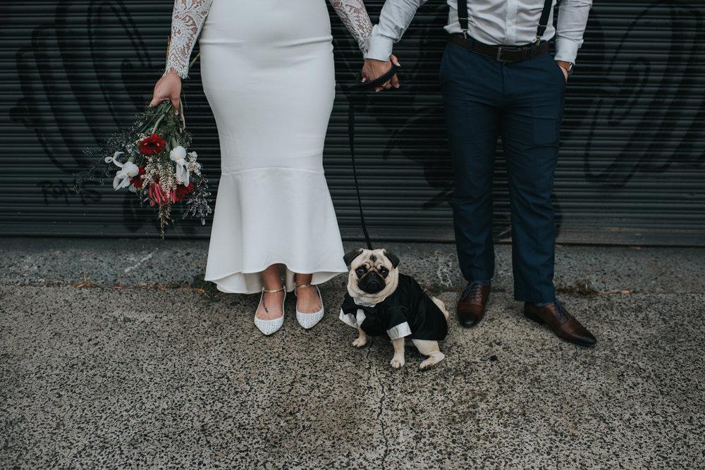 Brisbane Elopement   Wedding Photography-18.jpg
