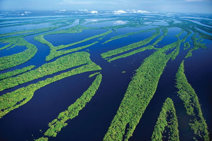 Vista aérea de la Amazonía en Brasil
