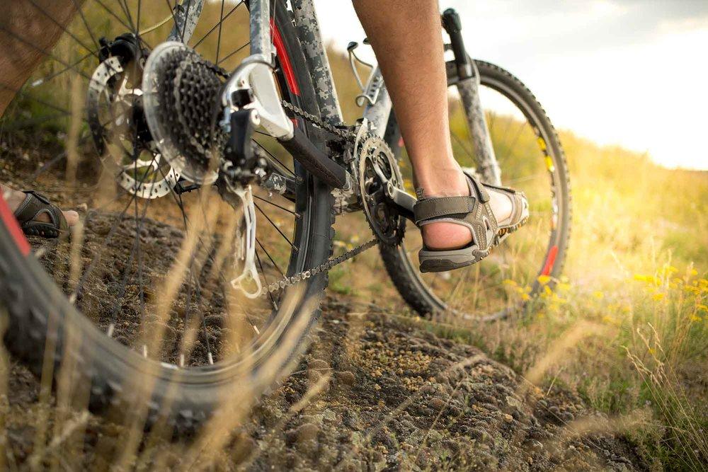 mountainbike-nordvest-safari-web-01.jpg