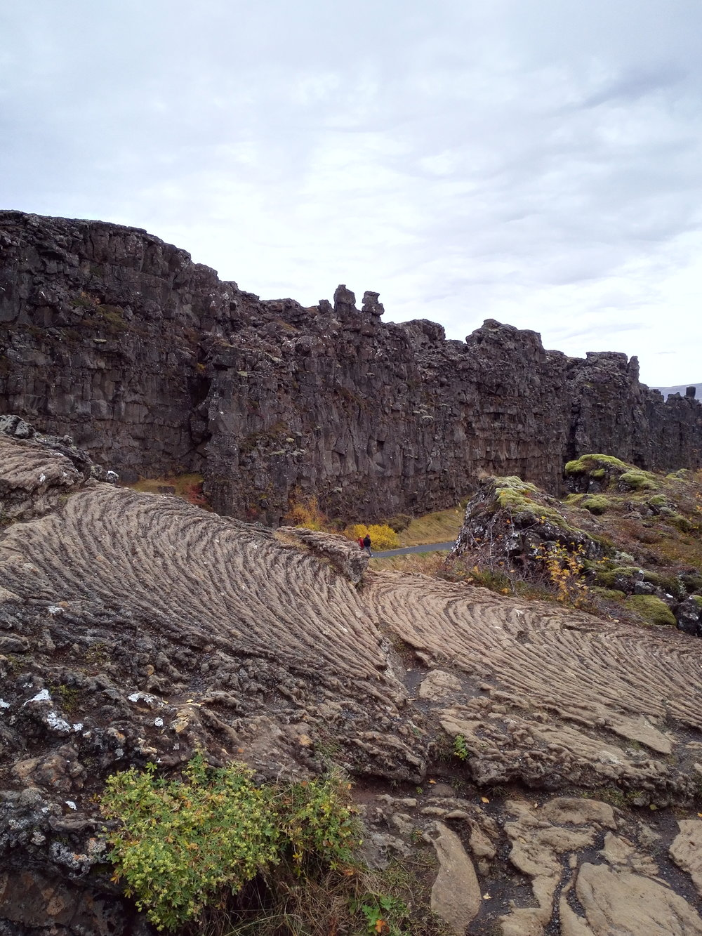 The Reykjanes, or Mid-Atlantic Ridge
